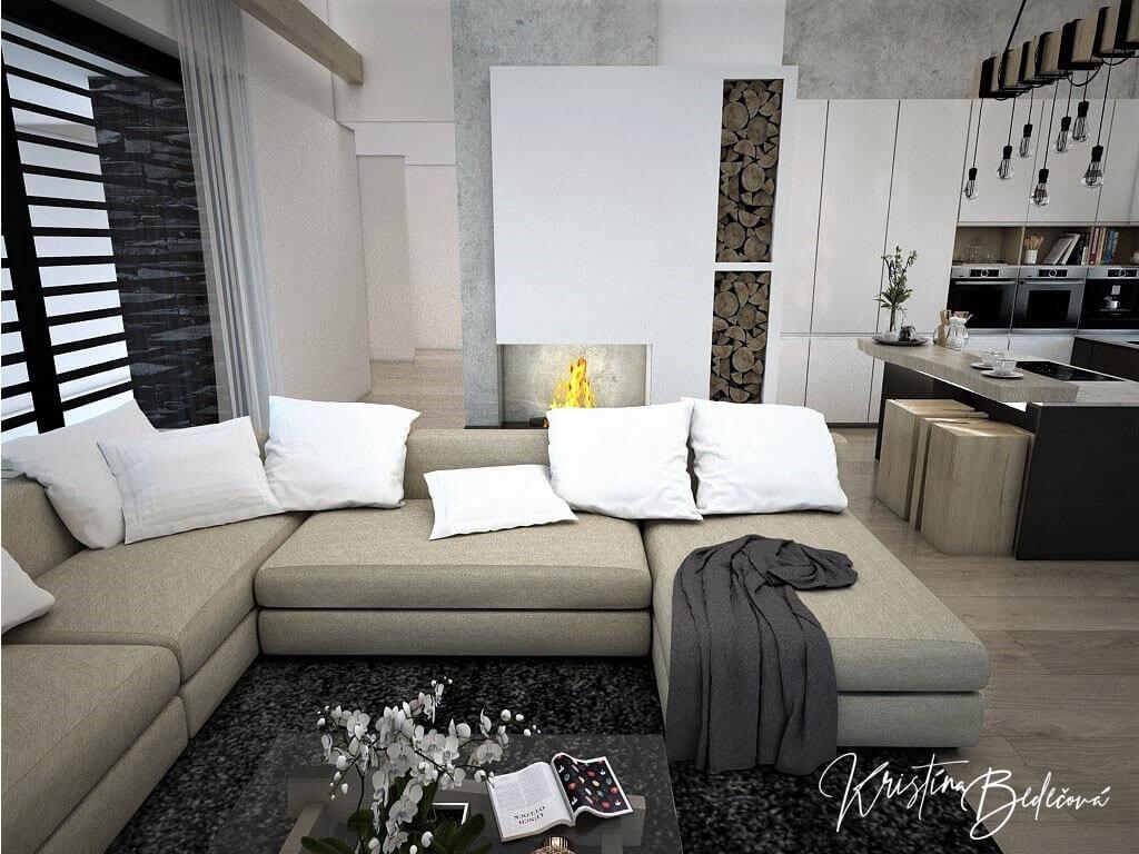 Návrh obývačky s kuchyňou Prírodné prvky v interiéri, pohľad na sedačku